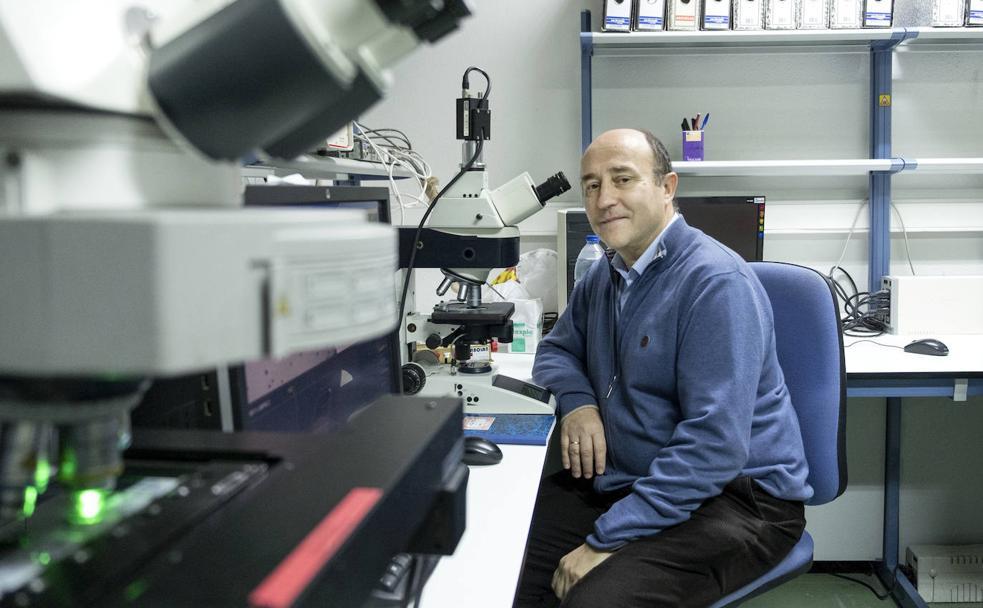 El doctor Jesús María Hernández, del Ibsal./FORMIGO / ICAL