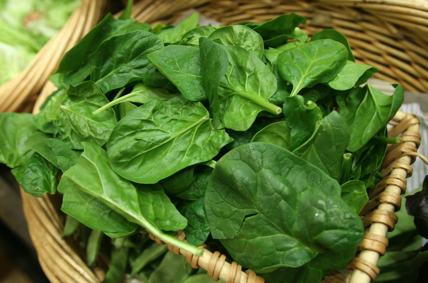 dieta a base de verduras verdes