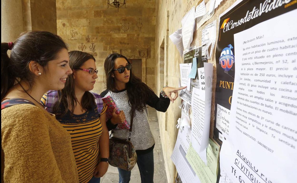 Coronavirus En Salamanca El Alquiler De Pisos Estudiantiles Se Frenó Cuatro Días Antes De La Declaración Del Estado De Alerta El Norte De Castilla