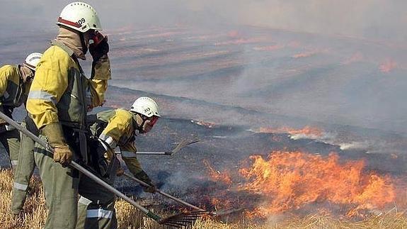 Resultado de imagen de brigadas incendios